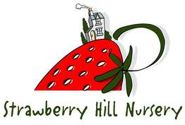 https://strawberryhillnursery.co.uk/